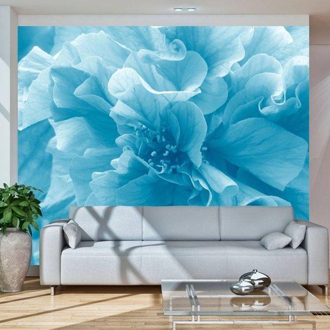 Fototapeta - Blue azalea