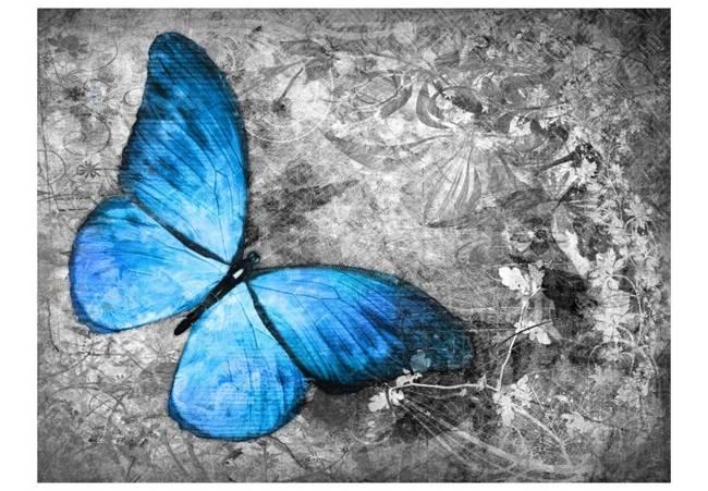Fototapeta - Blue butterfly