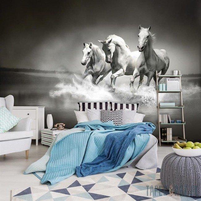 Fototapeta Czarno-białe galopujące konie 426