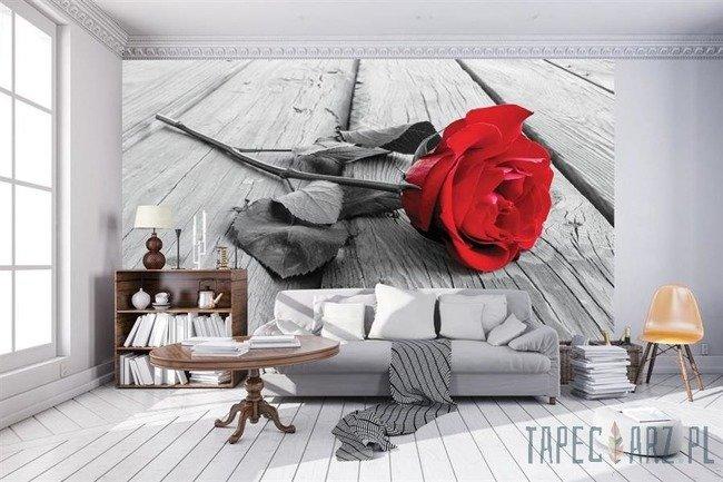 Fototapeta Czerwona róża na deskach 3671