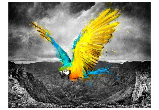 Fototapeta - Exotic parrot