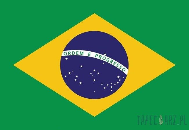 Fototapeta Flaga Brazylii 481