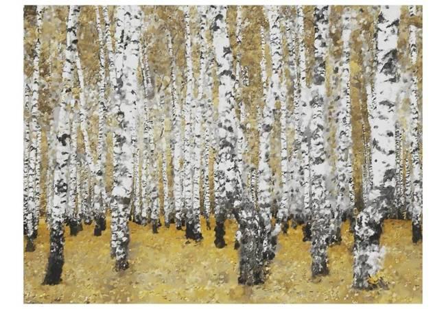 Fototapeta - Jesienny brzozowy las