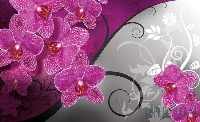 Fototapeta Kwiatowe ornamenty 1279