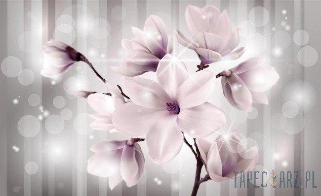 Fototapeta Kwiaty 3479
