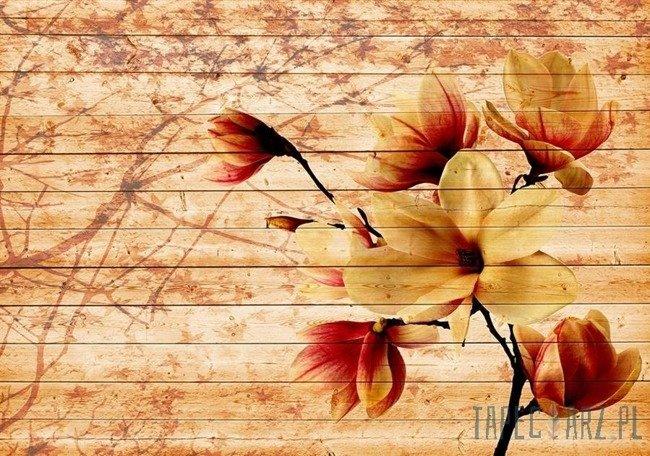Fototapeta Kwiaty 3520