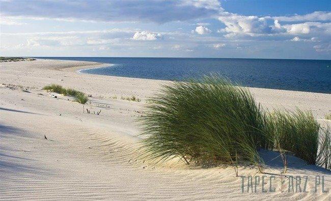 Fototapeta Piaszczysta plaża 655