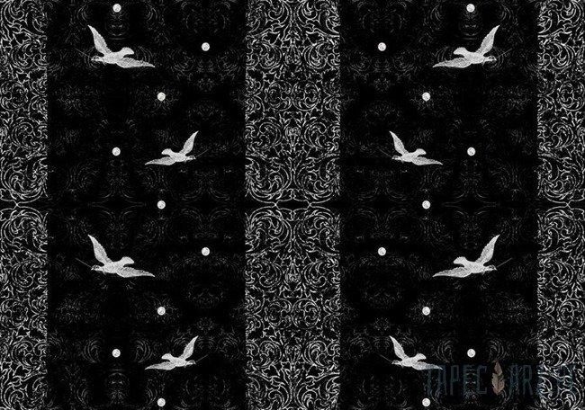 Fototapeta Ptaki na czarnym tle 2477