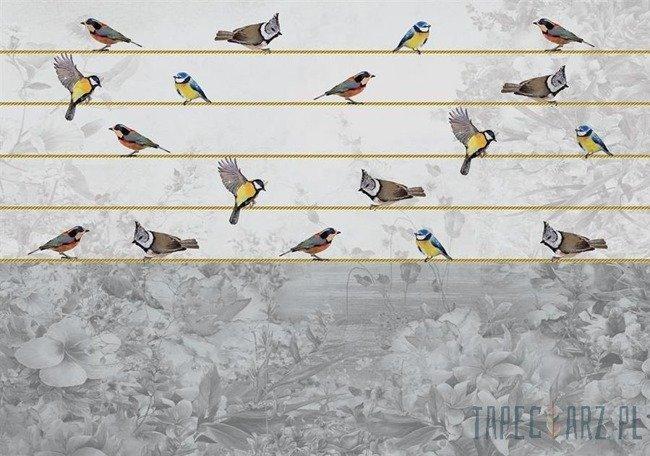 Fototapeta Ptaki na złotym sznurku 12062