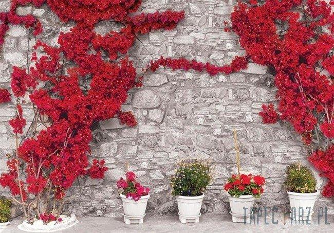Fototapeta Szary kamienny mur z czerwonymi kwiatami 3582