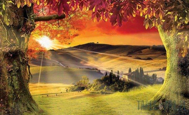 Fototapeta Toskania - zachód słońca 2599