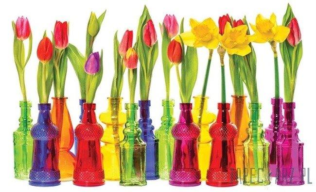 Fototapeta Tulipany 2143