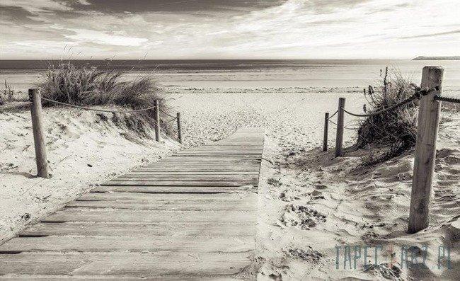 Fototapeta Zejście na plaże czarno- białe 2024