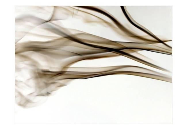 Fototapeta - dym - abstrakcja