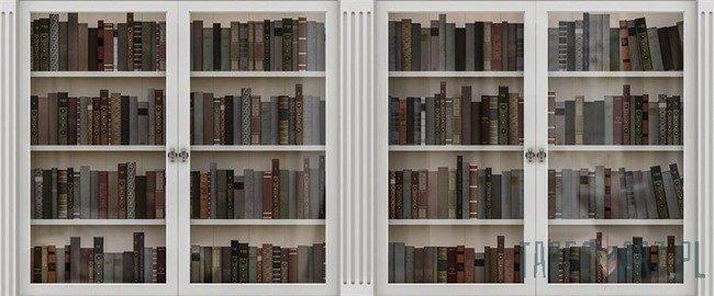 Fototapeta na flizelinie Biblioteczka - książki 3689VEP