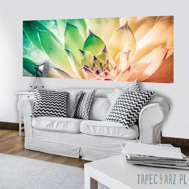 Fototapeta na flizelinie Kolorowy kwiat 3117VEP