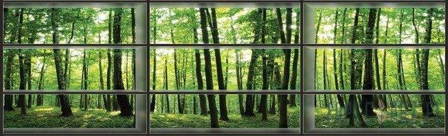 Fototapeta na flizelinie Widok na las przez okno 443VEE