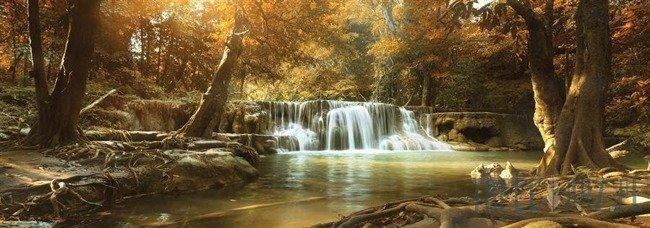 Fototapeta na flizelinie Wodospad w lesie 10470VEE