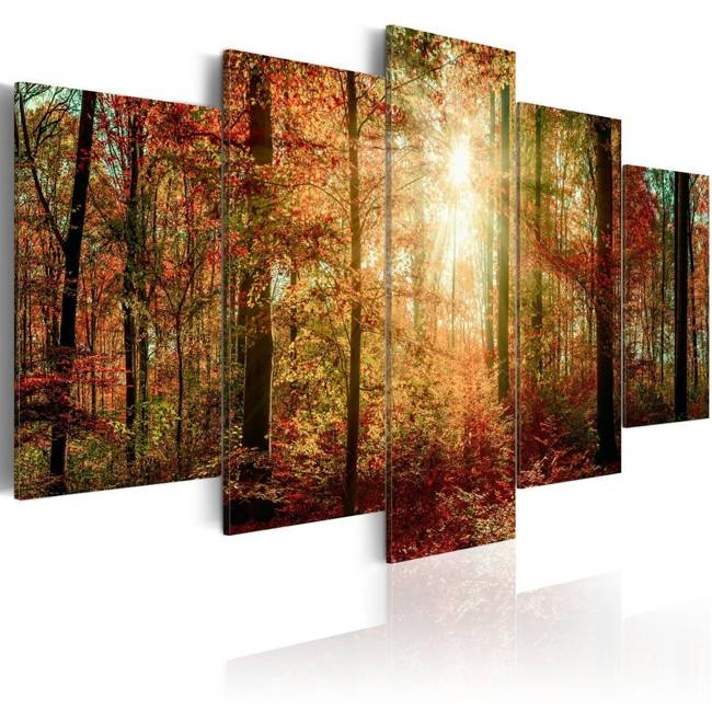 Obraz - Jesienna puszcza