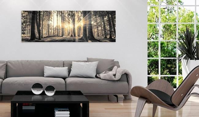 Obraz - Leśne słońce
