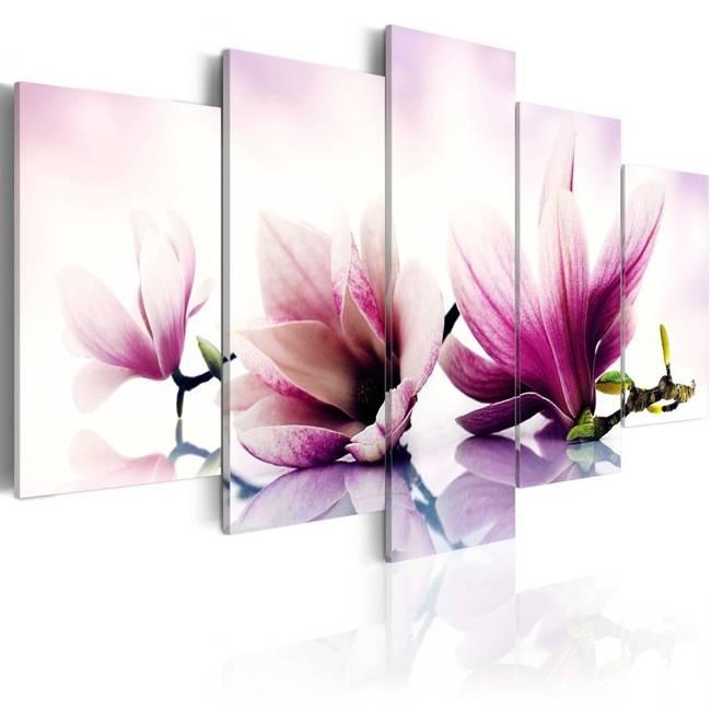 Obraz - Różowe kwiaty: magnolie