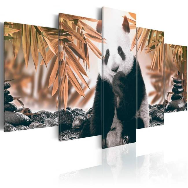 Obraz - Zamyślona panda