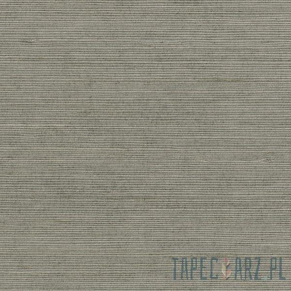 Tapeta ścienna Galerie 488-410 Grasscloth 2