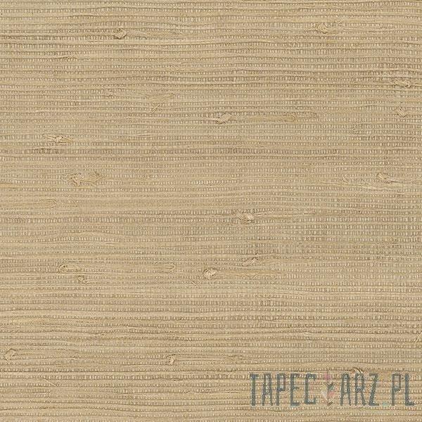 Tapeta ścienna Galerie 488-418 Grasscloth 2