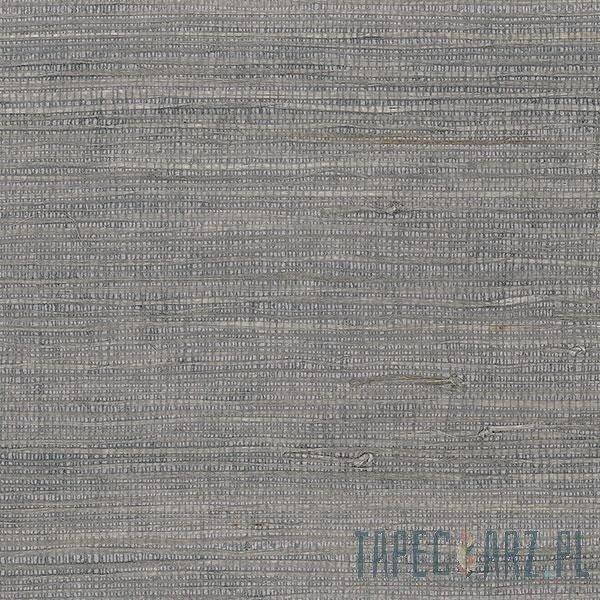 Tapeta ścienna Galerie 488-420 Grasscloth 2