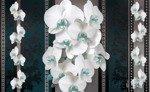 Fototapeta Białe storczyki na kwiecistym wzorze 1293