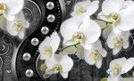 Fototapeta Orchidea 2973