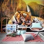Fototapeta - Piękno i bestia