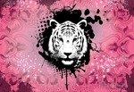 Fototapeta Tygrys na różowym tle 2187
