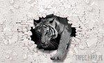 Fototapeta Tygrys wychodzący ze ściany 3D 10400